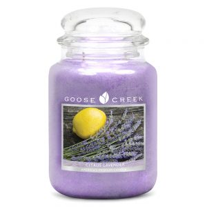 Goose Creek Citrus Lavender