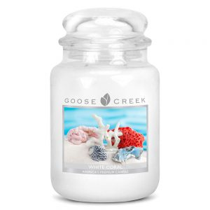 Goose Creek White Coral